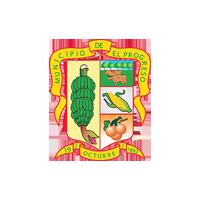 Alcaldia Municipal de El Progreso Logo